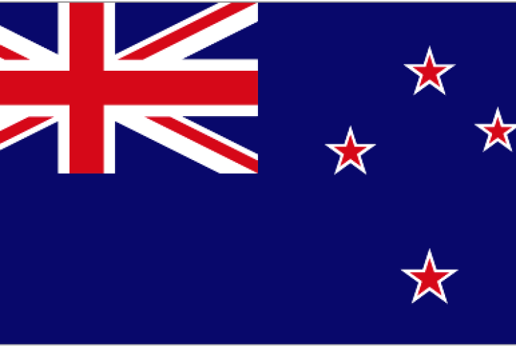 accounting report cdl hotels new zealand limited