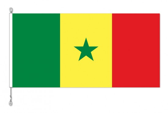 Senegal National Country Flag